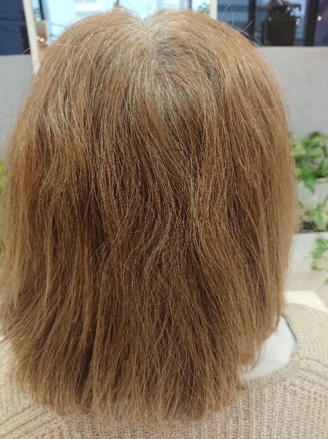 2/16 カラー毛にも安全な縮毛矯正!