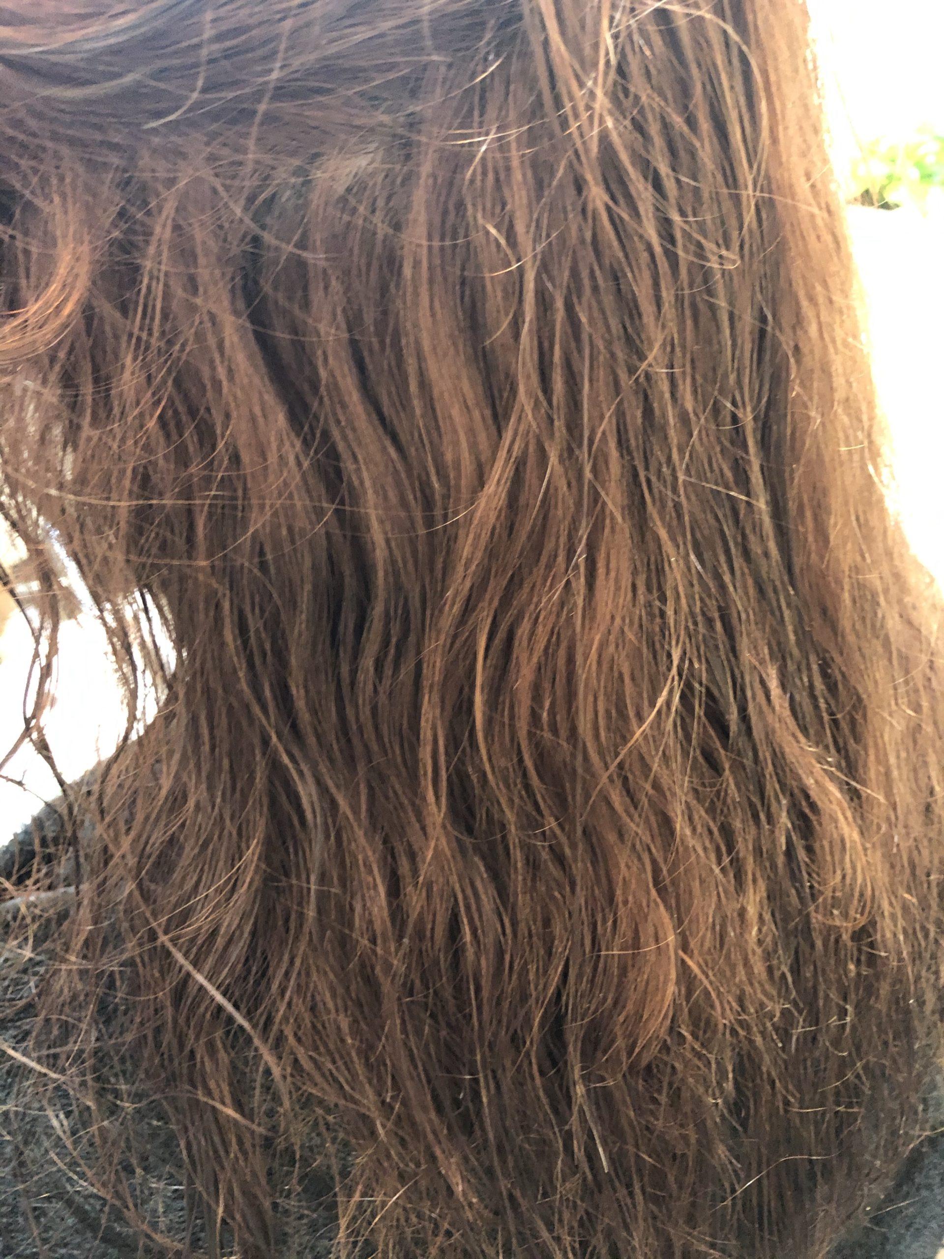超ロングブリーチ毛のクセ毛
